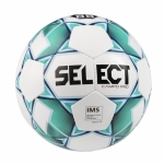 Мяч футбольный SELECT Campo Pro №5 IMS